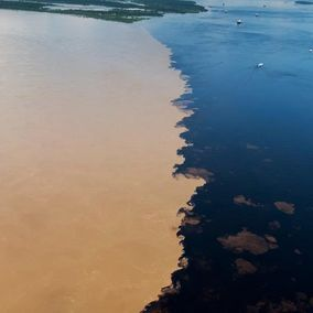 Meeting of the waters Manaus Brazilie