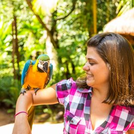 Bird park Foz do Iguacu Brazilie